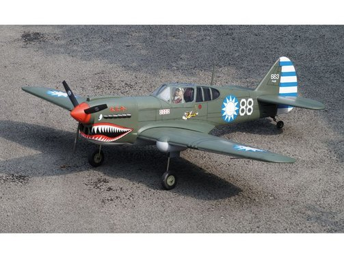 Curtiss P-40 1570 mm ARF